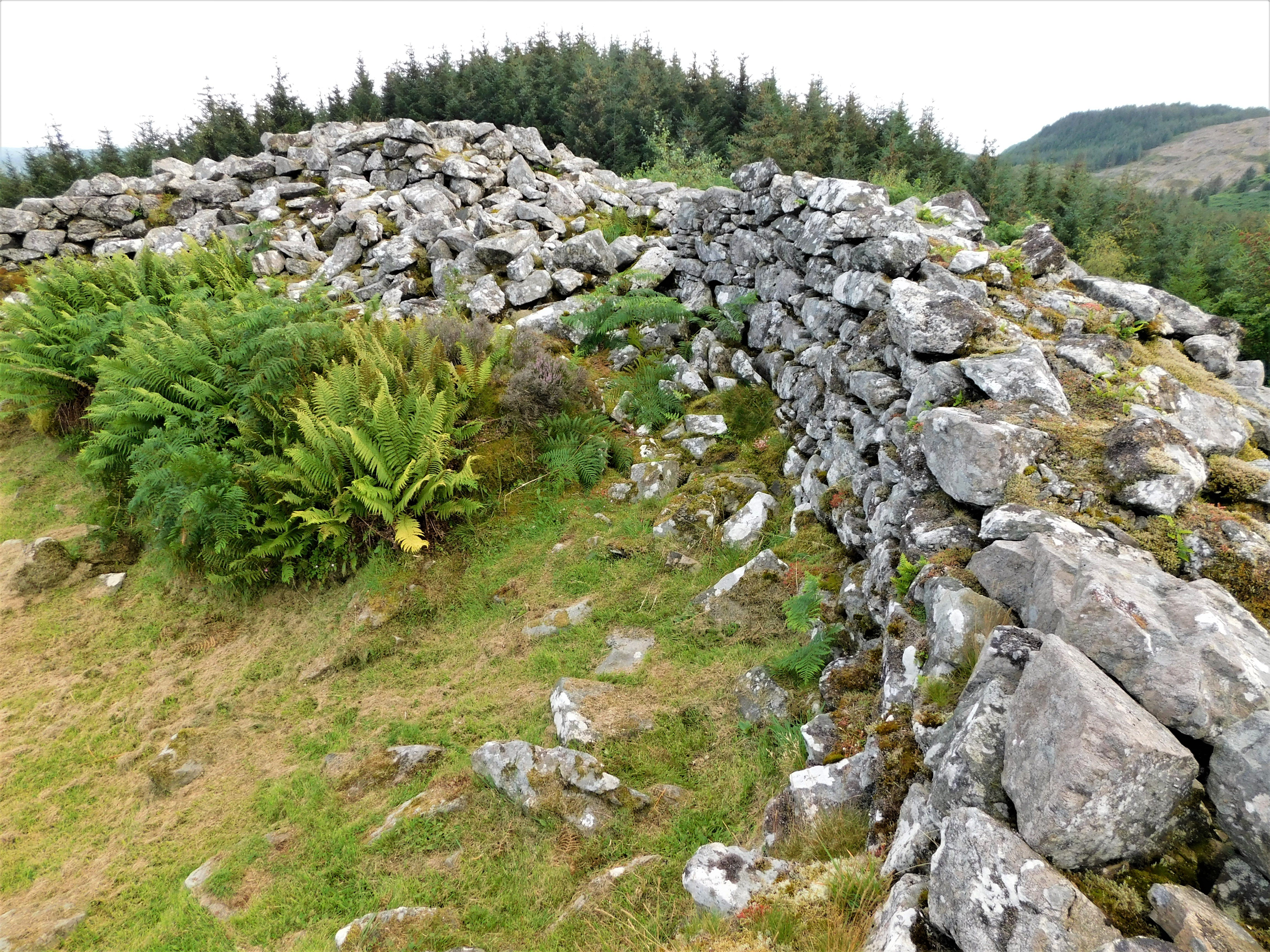 Dùn a' Choin Duibh The Dun of the Black Dog (4)
