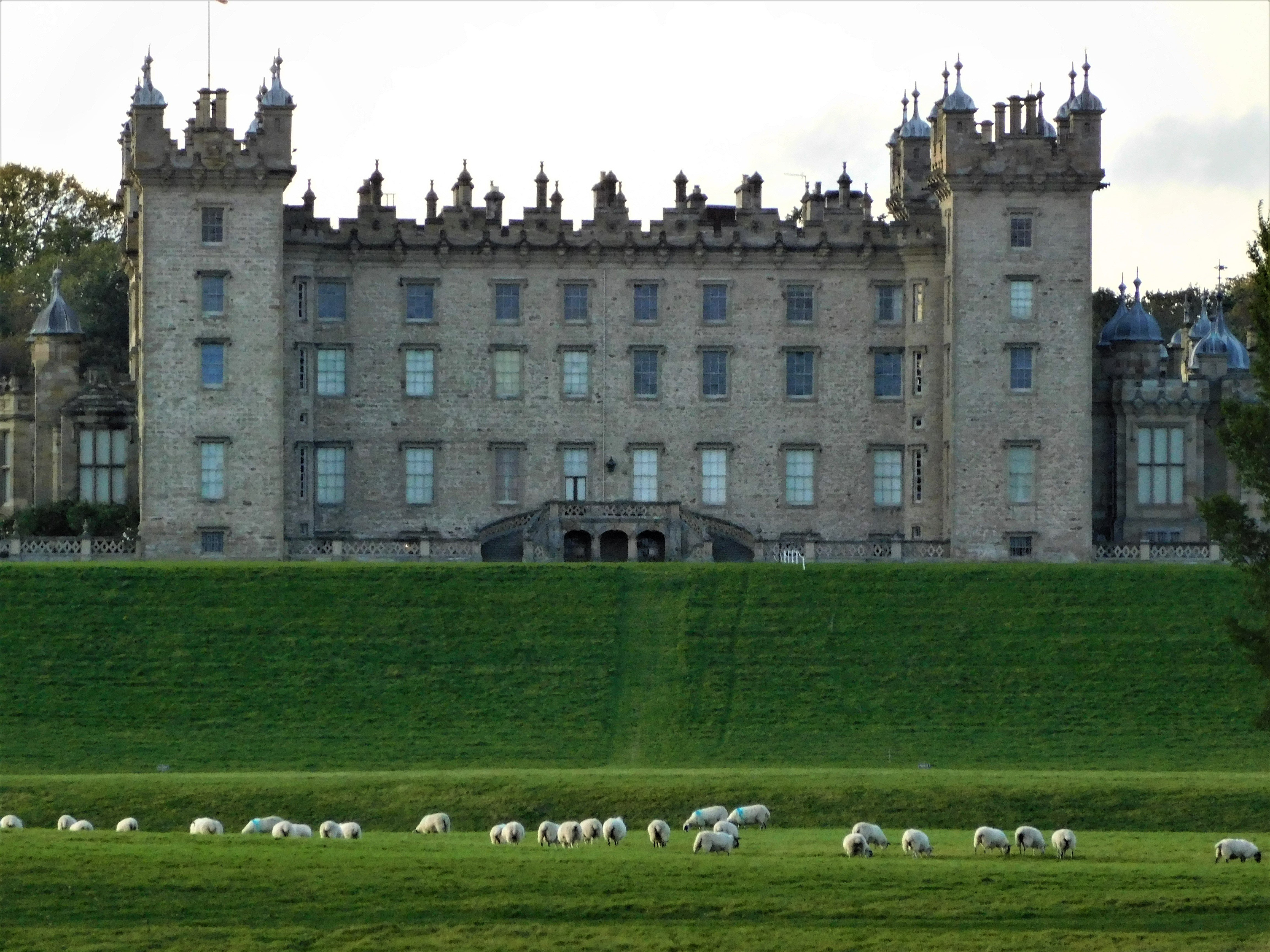 Floors Castle (5)